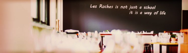 About Les Roches banner